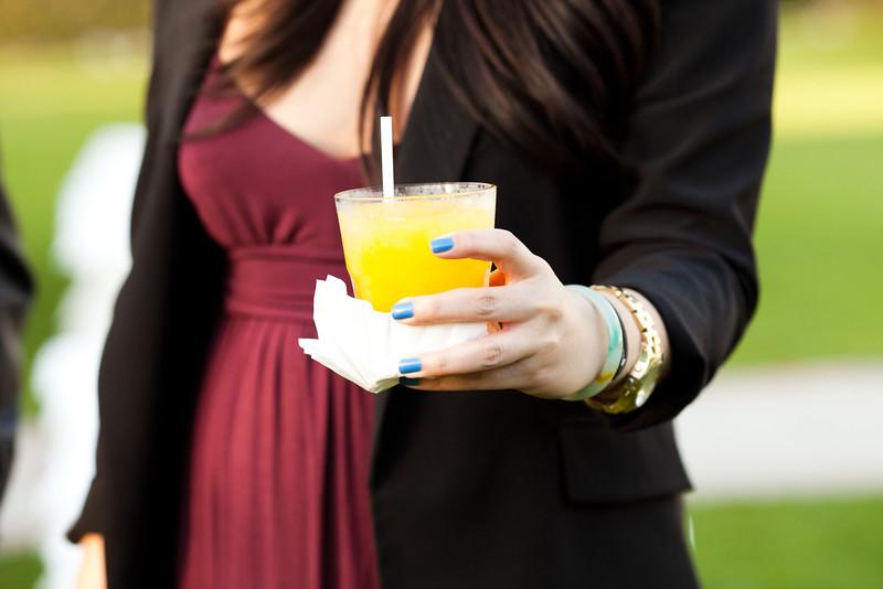 20120211-cocktail-11.JPG