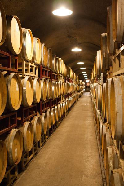 Inside our wine cellar.  :-)  (Kunde vineyards in Sonoma).