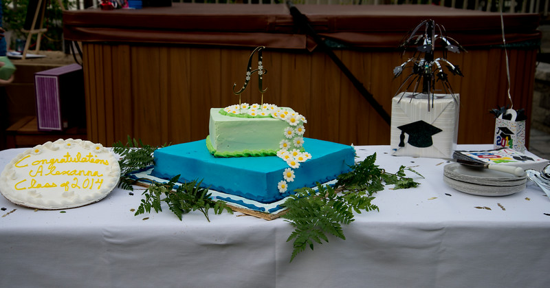 Alexanna's graduation party