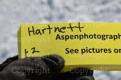 Hartnett