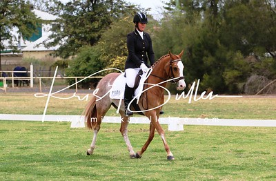 Dubbo Dressage Champs 2017 - Saturday afternoon