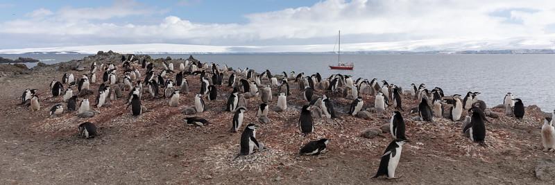 2019_01_Antarktis_01297.jpg
