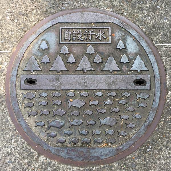 manholeTaipei.jpg