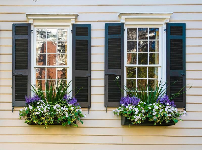 Window Flower Boxes-3.jpg