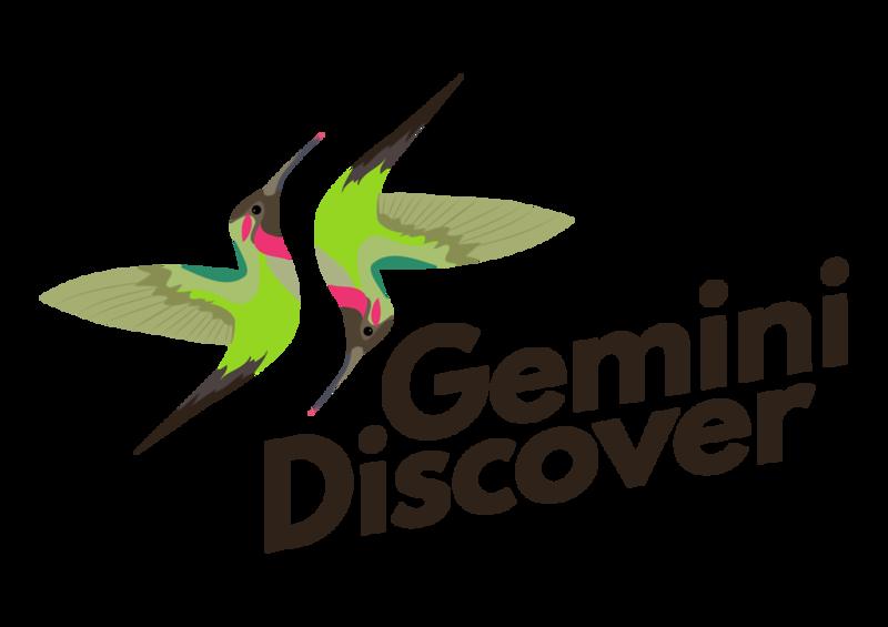 Gemini Discover3-02.png