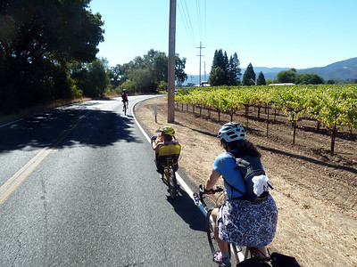 Unicycle Wine-tasting in Napa