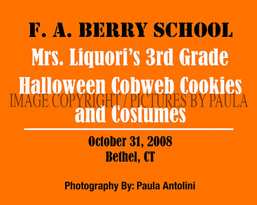 Mrs. Liquori's 3rd Grade Halloween Cobweb Cookies & Costumes ~ F. A. BERRY SCHOOL ~ Bethel, CT ~ October 31, 2008