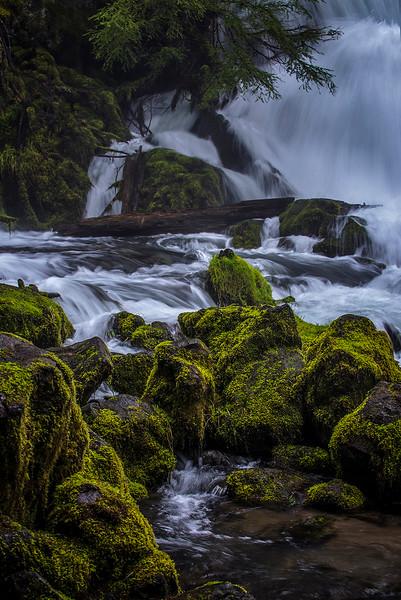 P20160326_Pearsoney Falls_Rogue-River_KateThomasKeown_DSC4374-1024.jpg