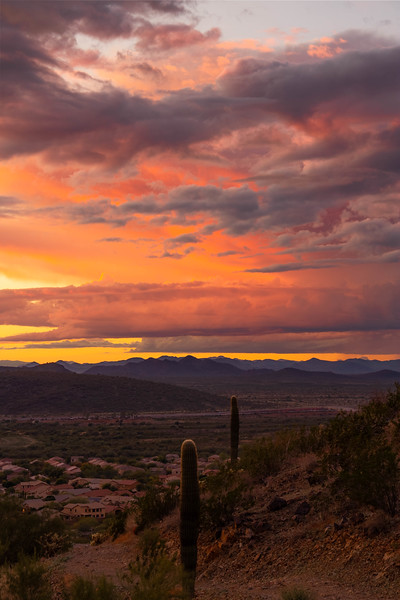 Desert Hiking Trail at Sunset