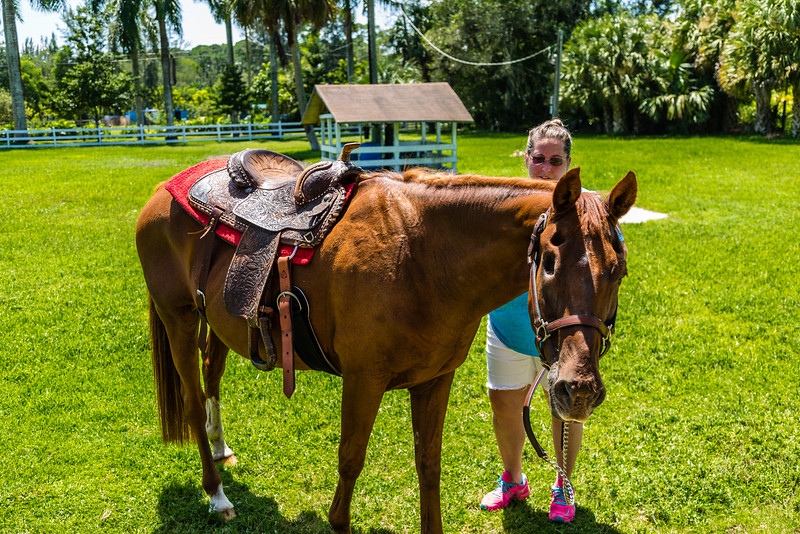 Baxter, Olivia and the pasture pals on Sunday, September 04, 2016 in Loxahatchee Groves, Florida. (Joseph Forzano / Deep Creek FIlms & Photography)
