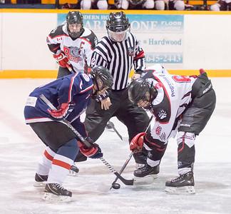 Hockey 2014 2015