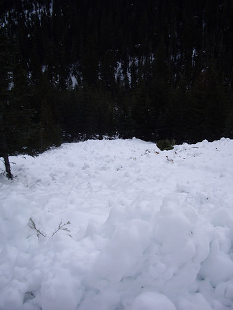 Avalanche On Mt. Catherine Loop