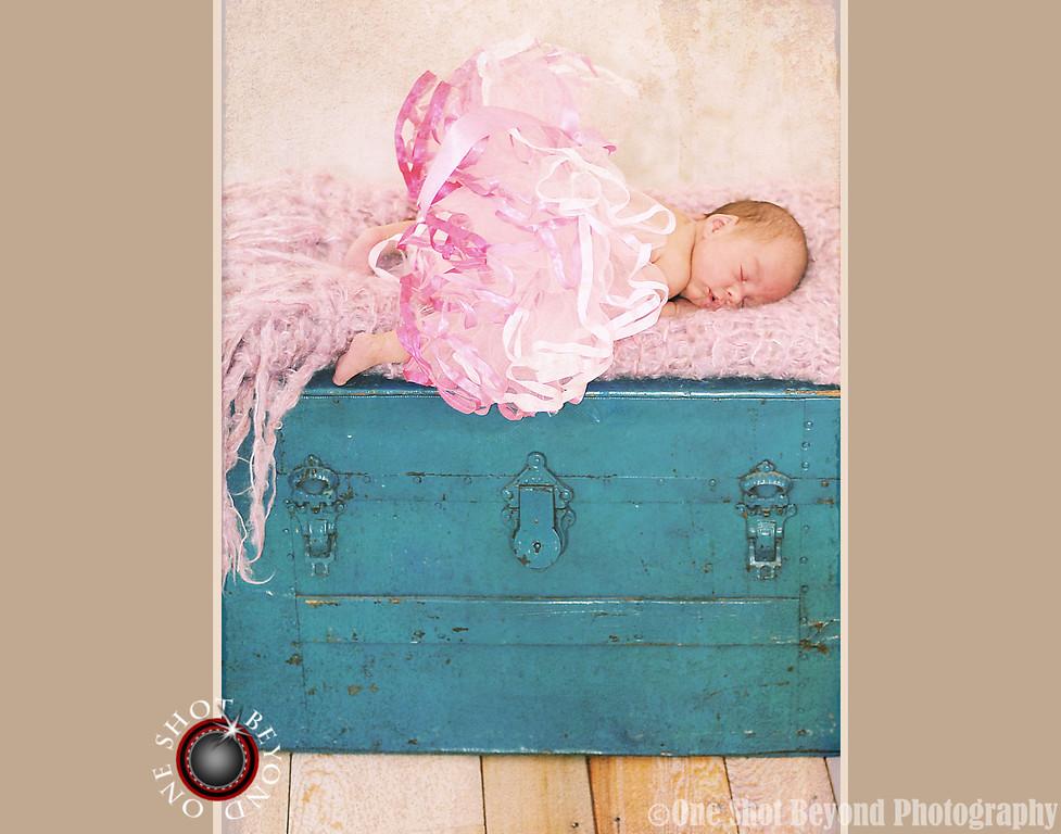Orange County Newborn Baby Portrait Photographer