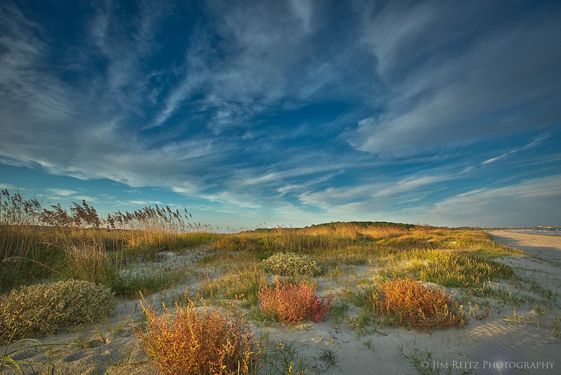 Colorful dune vegatation catches the late-afternoon sun - Kiawah Island, South Carolina
