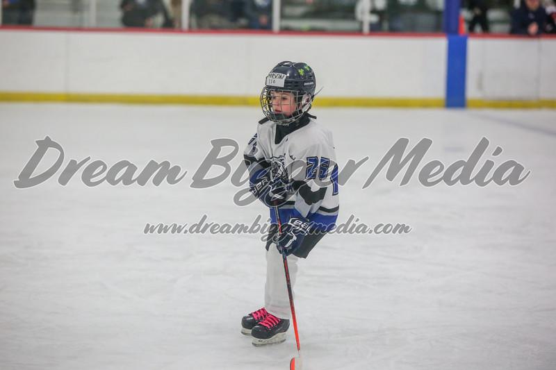 Blizzard Hockey 111719 7378.jpg