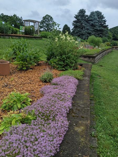Blue Spruce Gardens