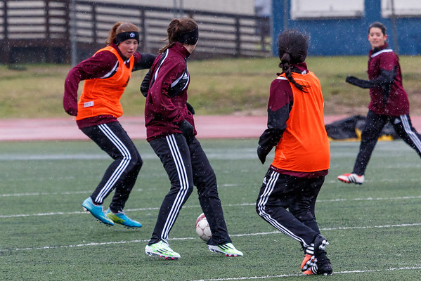 Dripping Springs Lady Tigers vs Angelo Central Ladycats - Thu, Jan 22, 2015