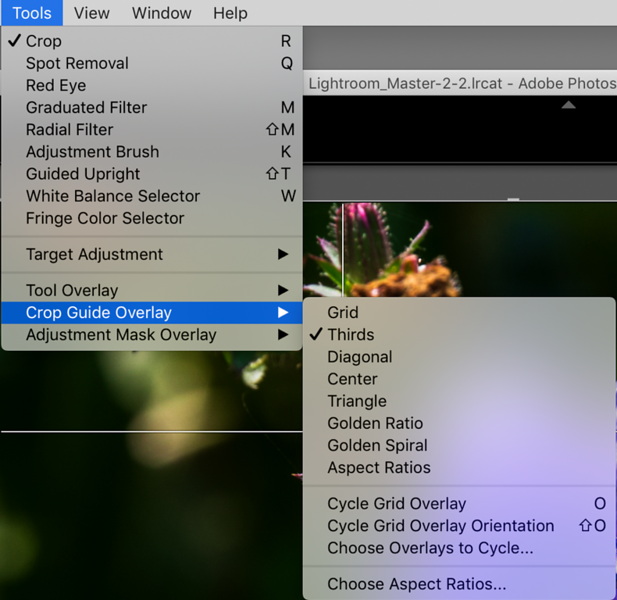 Adobe ® Lightroom's Tools Menu with the Crop Guide Overlay Settings  Customizing the Grid Overlay