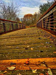 Fall Walk 11/7 Art