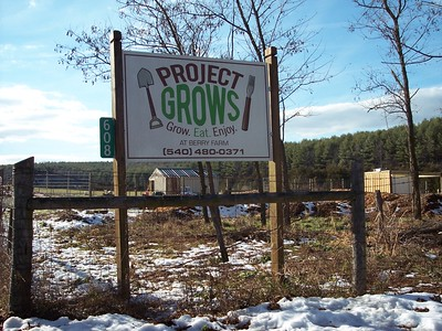 Project Grows pollinator garden