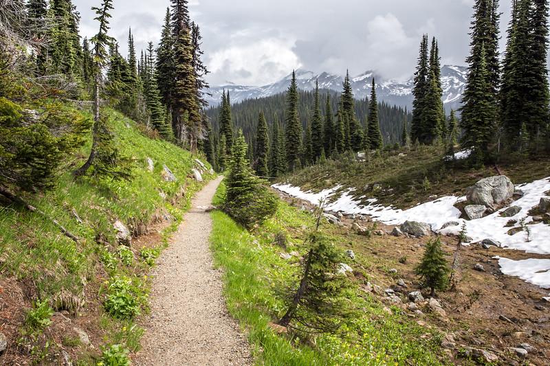 Summit Trail to Eva Lake