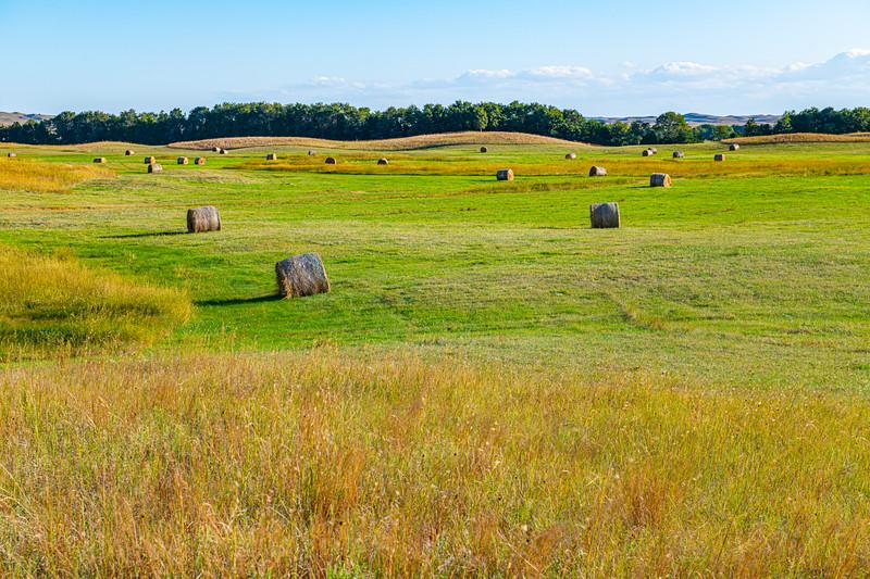 Horn Ranch-1360.jpg