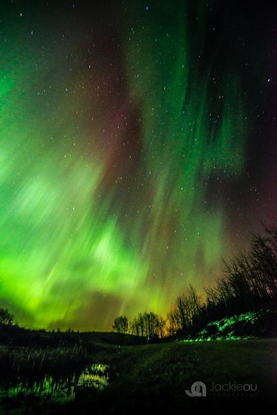 2015-AuroraJAU_3621.jpg