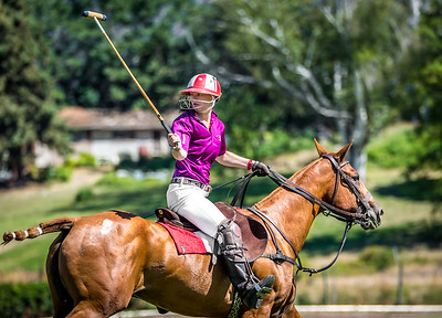 2015 Polo Tournament