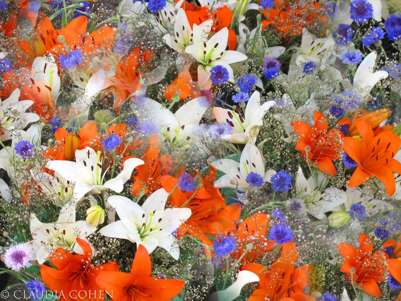 prettyflowers.jpg
