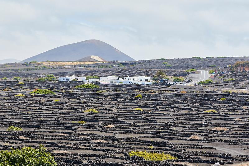 20180510 Fuerteventura img027.jpg