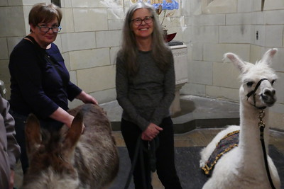 DEC 24 Mon 2018 PIERRE THE LLAMA SERVICE HEAVENLY REST