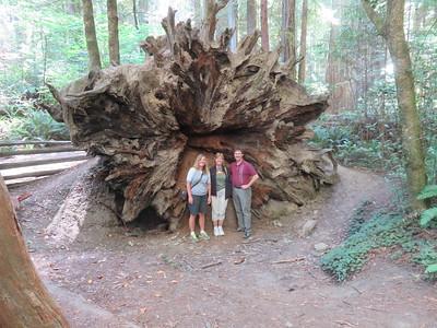 Oregon-California 2016