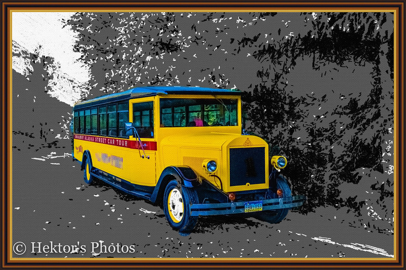Skagway Streetcar Tour-7.jpg