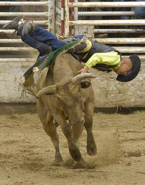 Coombs Bullarama-2008-179A.jpg