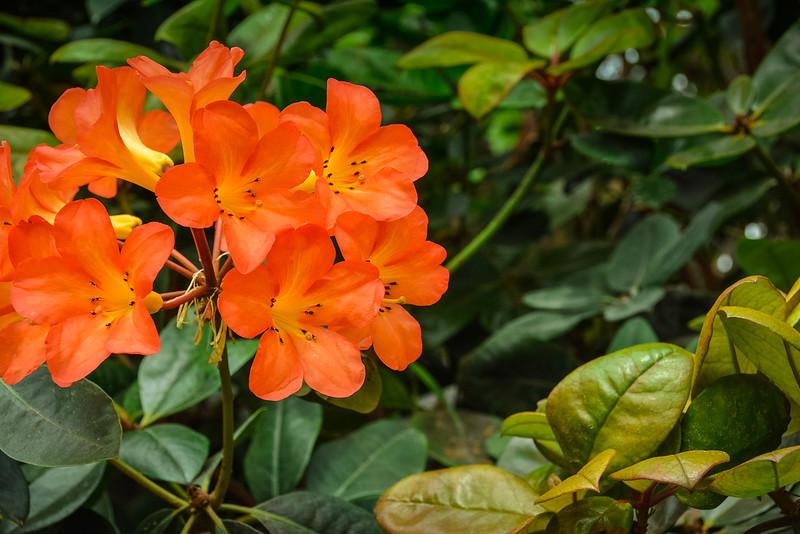 Singapore-128.jpg