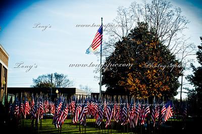 Veterans Day Parade 12 Nov 2011