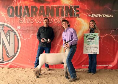 Sunday Sheep & Goat Show