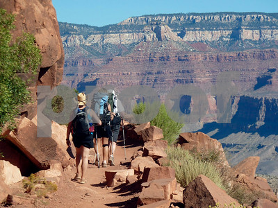 riding-the-mules-at-grand-canyon-is-not-a-pony-ride-but-well-worth-the-journey
