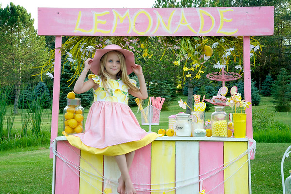 Lemonade Stand 2016
