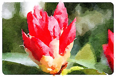 Waterlogue and Fragment