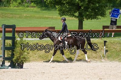 Short Stirrup/Beginner Hunter Under Saddle