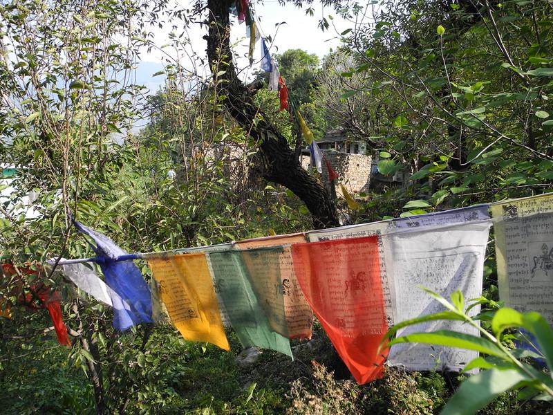 india2011 615.jpg