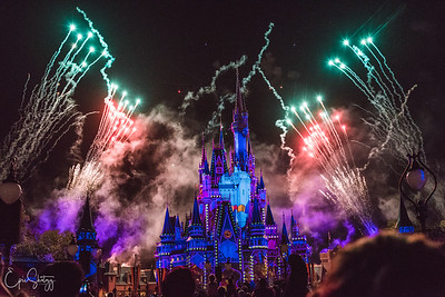 MAGIC KINGDOM HAPPILY EVER AFTER FIREWORKS