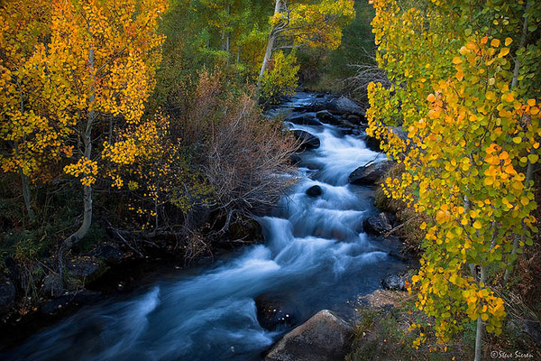 Autumn Splendor Bishop Creek Canyon 2009