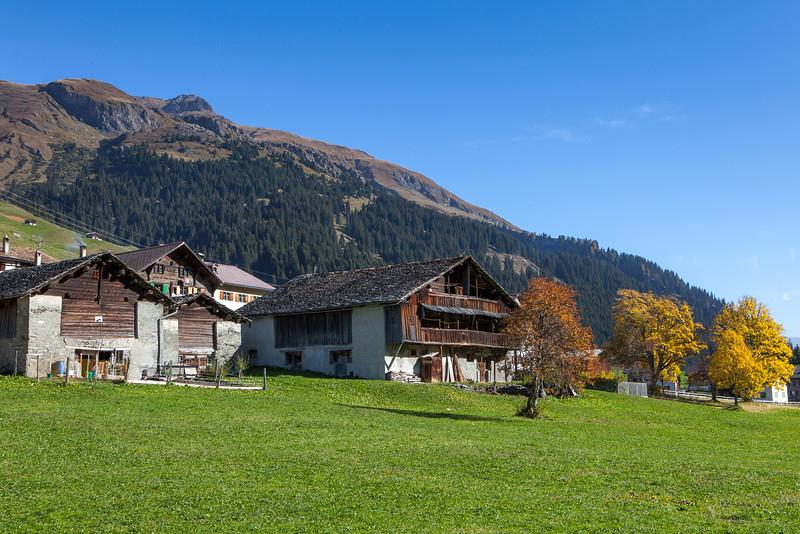 Rheinwald-Sommer-D-Aebli-4256.jpg