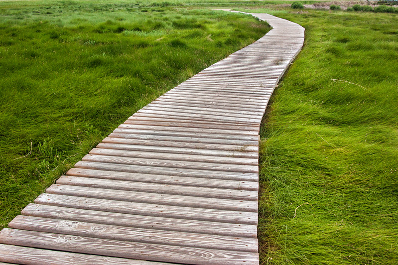 Wellfleet boardwalk 2.jpg