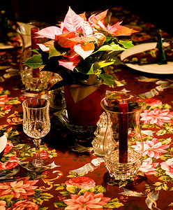 2007-12-25 Table Setting