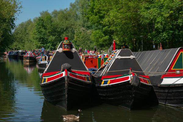 Canal Festival 2018