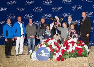 Holstein Winners Circle 2018