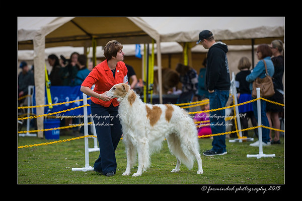 06/27/2015 - Alaska Kennel Club All Breed Dog Show